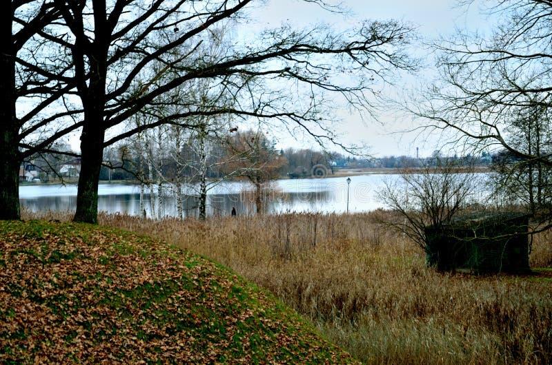 En beskåda av en lake royaltyfri foto