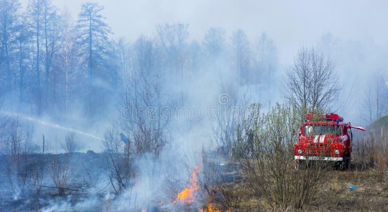 En bil och en grupp av brandmän släcker branden på en torkad rökt brinnande äng royaltyfri fotografi