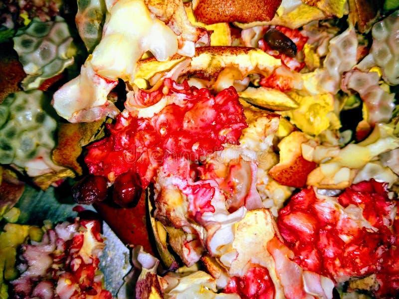 En bild av granatäppleskal fotografering för bildbyråer
