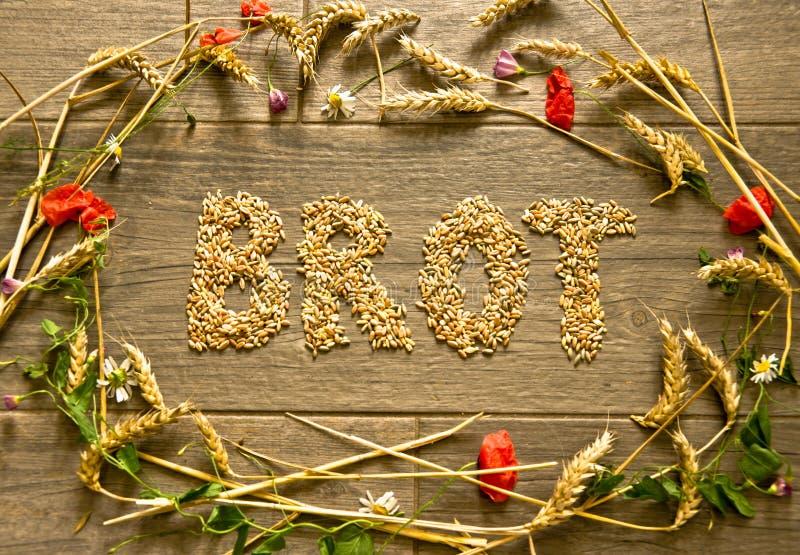 """En bild som läggas med sädesslag i form av en krage för tacksägelseinsida, är den planlagda ord""""Brot"""" tyska lanuagen royaltyfri fotografi"""