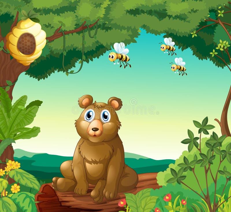 En björn och de tre bina i skogen royaltyfri illustrationer