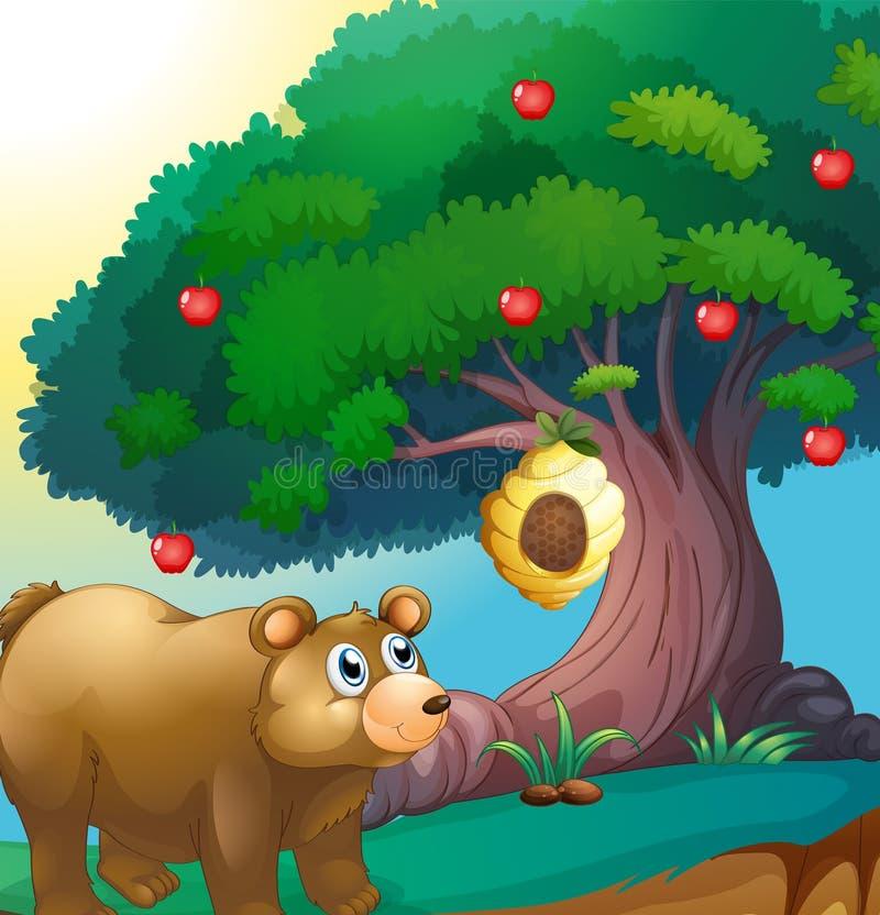 En björn som ser bikupan som hänger i ett äppleträd stock illustrationer