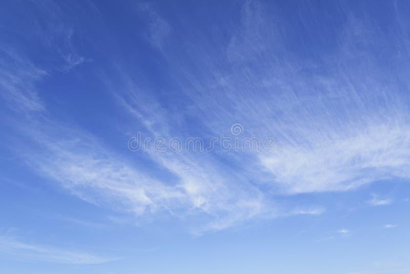 En blå himmel för härlig sommar med ljusa fjäderlika moln royaltyfri fotografi