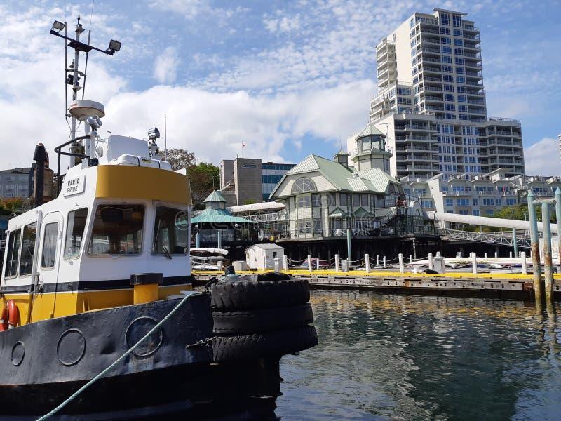 En bogserbåt i Nanaimo Harbour arkivfoto