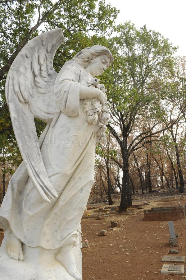 En bränd kyrkogård efter dalbranden 2015 i Lake County, Kalifornien arkivbilder