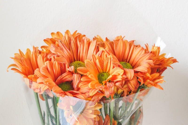 En bra gåva med blomman royaltyfri fotografi