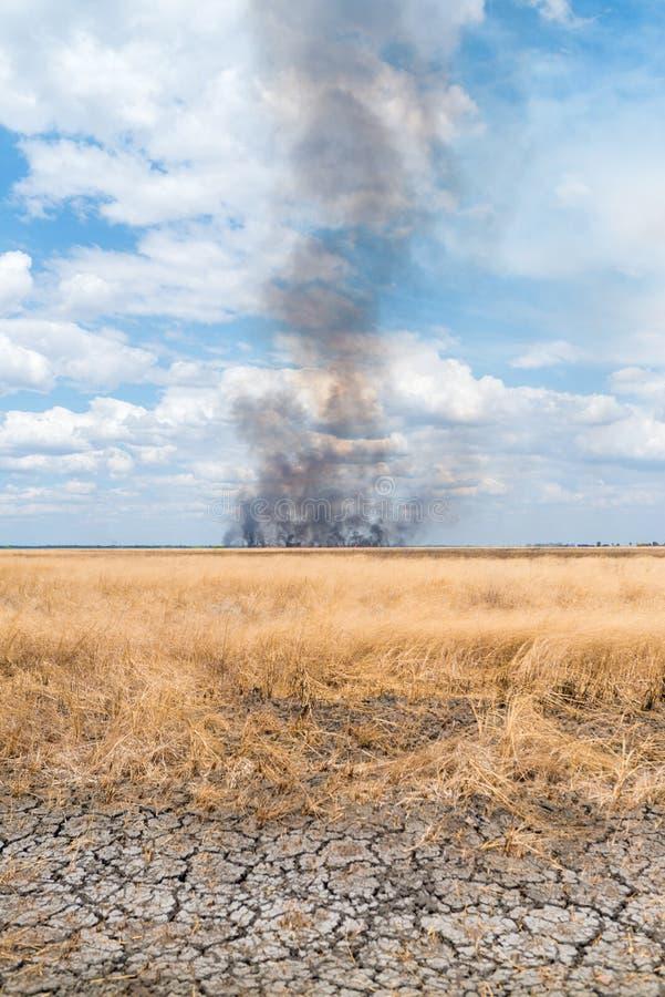 En brand i ett fält royaltyfri bild