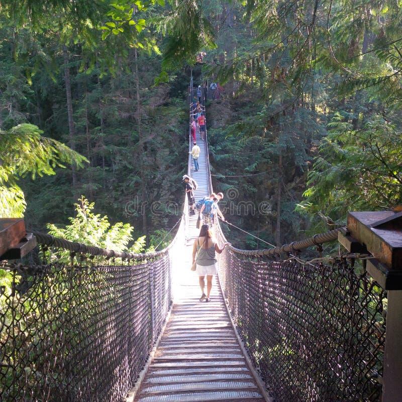 En bro över den Capilano floden royaltyfri foto