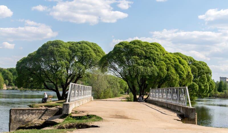 En bro över en flod med fulla gröna träd fotografering för bildbyråer