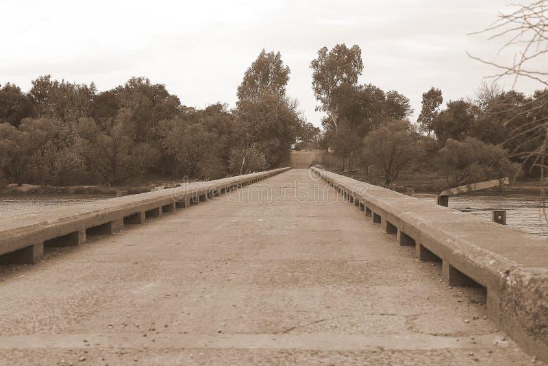 En bro för långt royaltyfri bild
