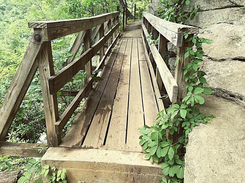 En bro som ska ta dig till nedgångarna royaltyfri bild