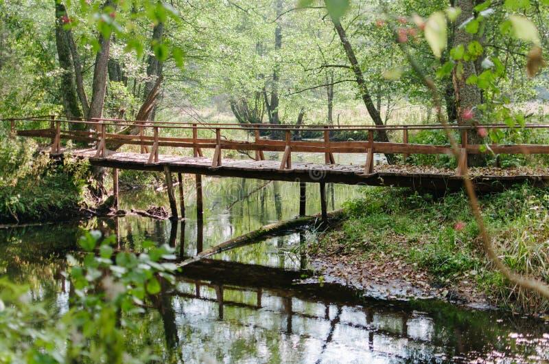 En bro till och med floden royaltyfri foto