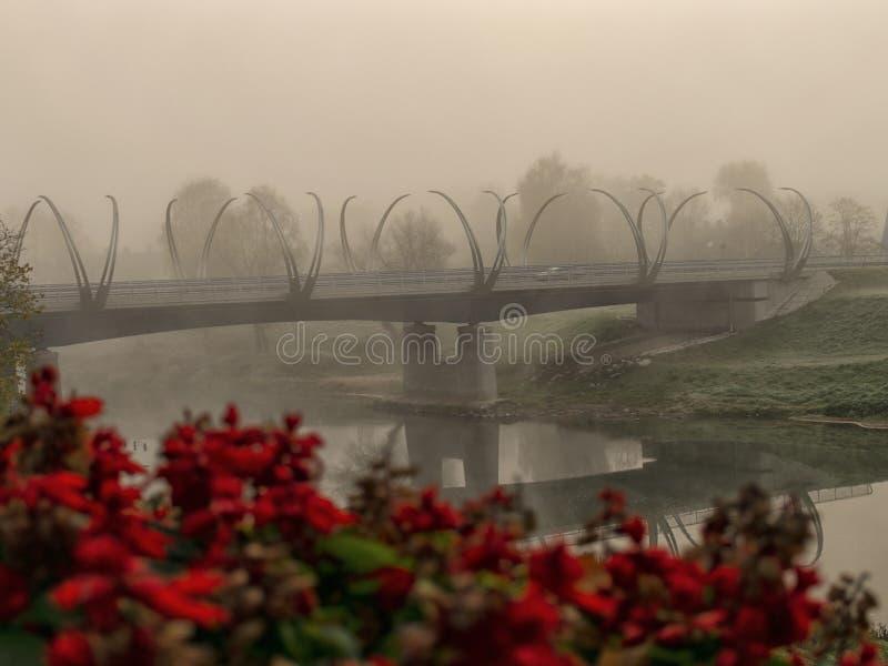 En bro ?ver floden royaltyfria foton