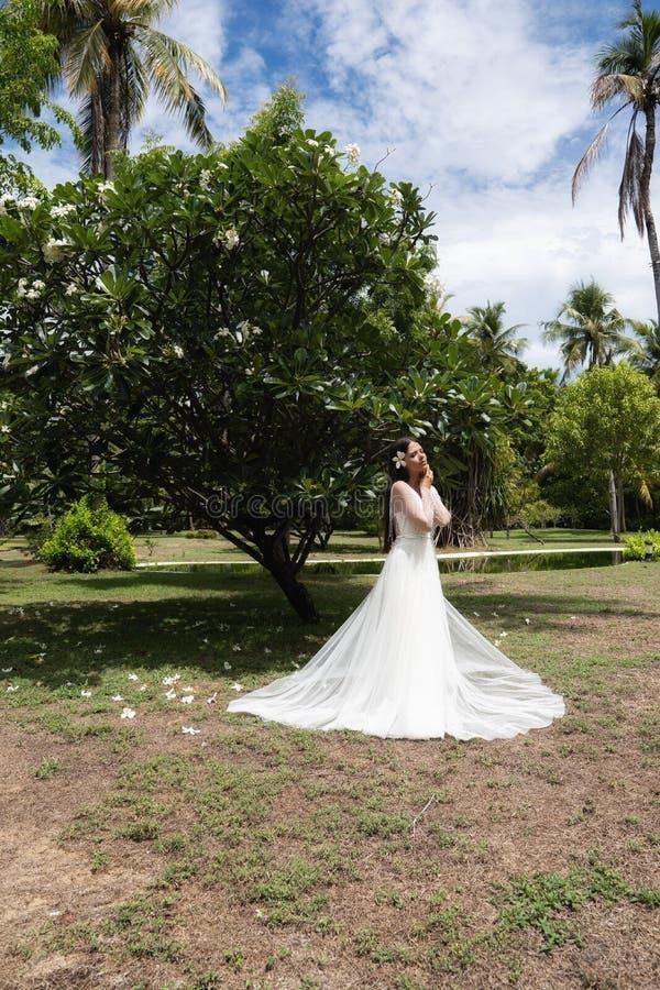 En brud i en vit klänning med en exotisk blomma i hennes hår står under ett blomma tropiskt träd royaltyfri bild