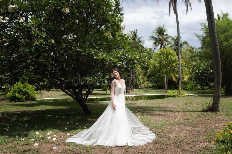 En brud i en vit klänning med en exotisk blomma i hennes hår står under ett blomma tropiskt träd royaltyfria bilder