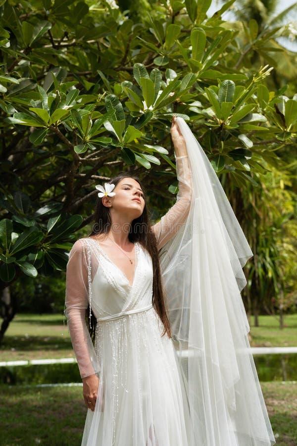 En brud i en vit klänning med en exotisk blomma i hennes hår står under ett blomma tropiskt träd arkivfoton