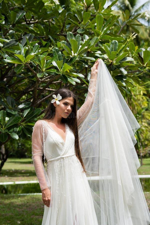 En brud i en vit klänning med en exotisk blomma i hennes hår står under ett blomma tropiskt träd arkivbild