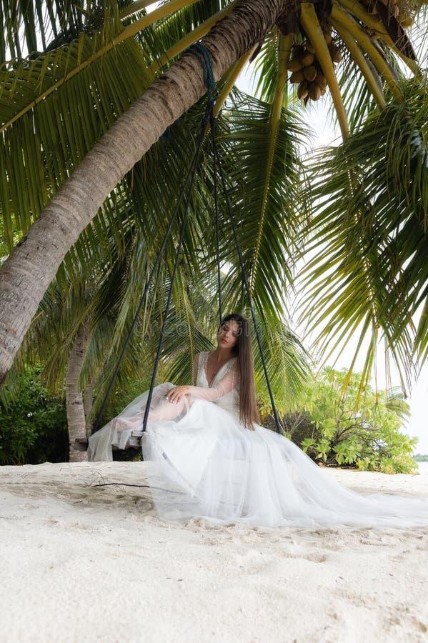 En brud i en vit klänning rider på en gunga under en stor palmträd arkivfoto