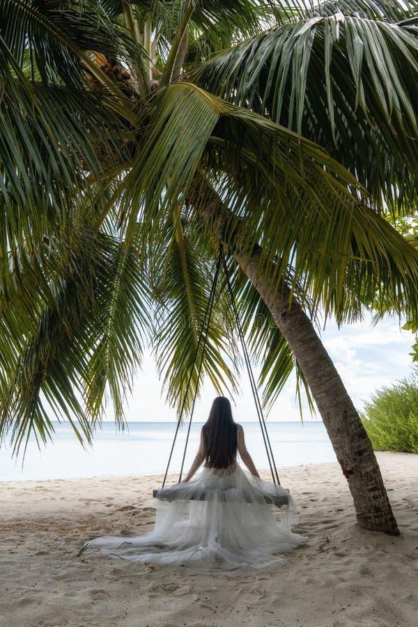 En brud i en vit klänning rider på en gunga under en stor palmträd arkivfoton