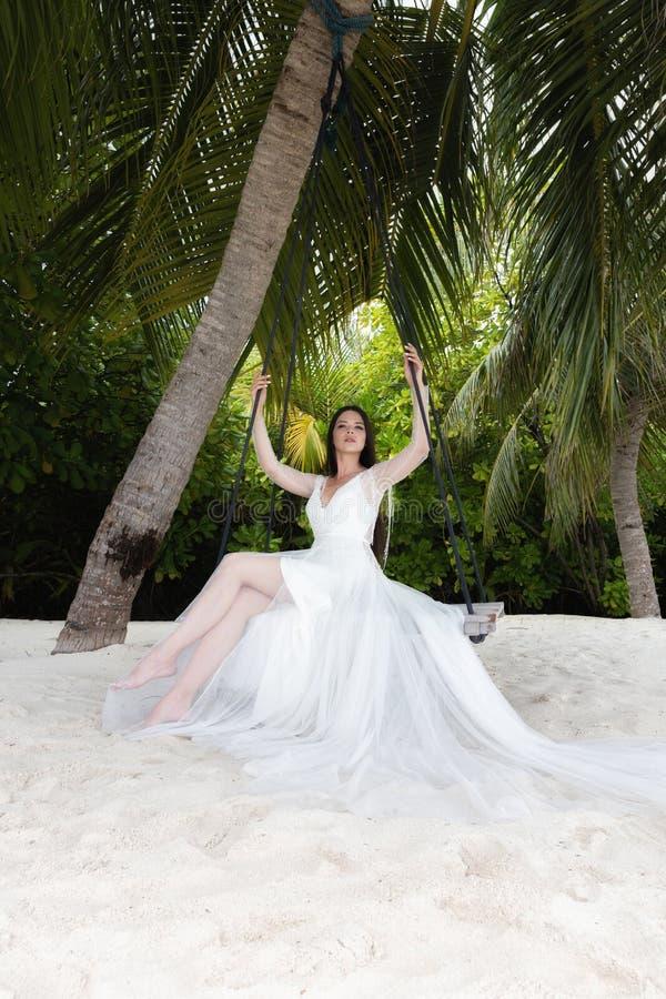En brud i en vit klänning rider på en gunga under en stor palmträd royaltyfri foto