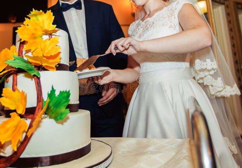 En brud och en brudgum klipper deras bröllopstårta royaltyfri foto