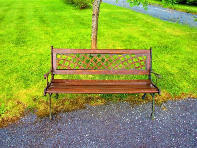 En brun gammal modebänk i en trädgård i Norge royaltyfria foton