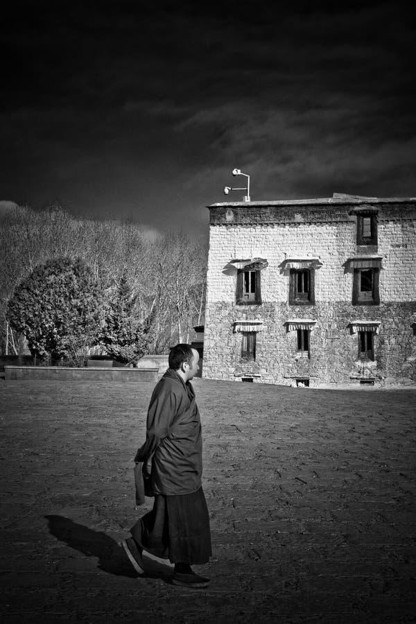 En buddistisk munk av den Tashilompu kloster Shigaste Tibet royaltyfri bild
