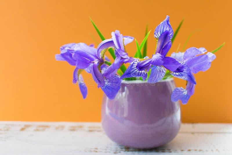 En bukett av blåa iriers i en liten kopp på en orange bakgrund royaltyfria bilder