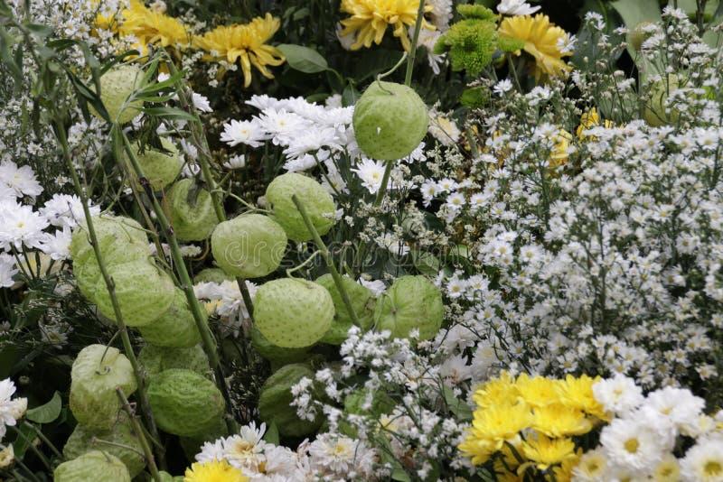 En bukett av blandade blommor royaltyfria foton
