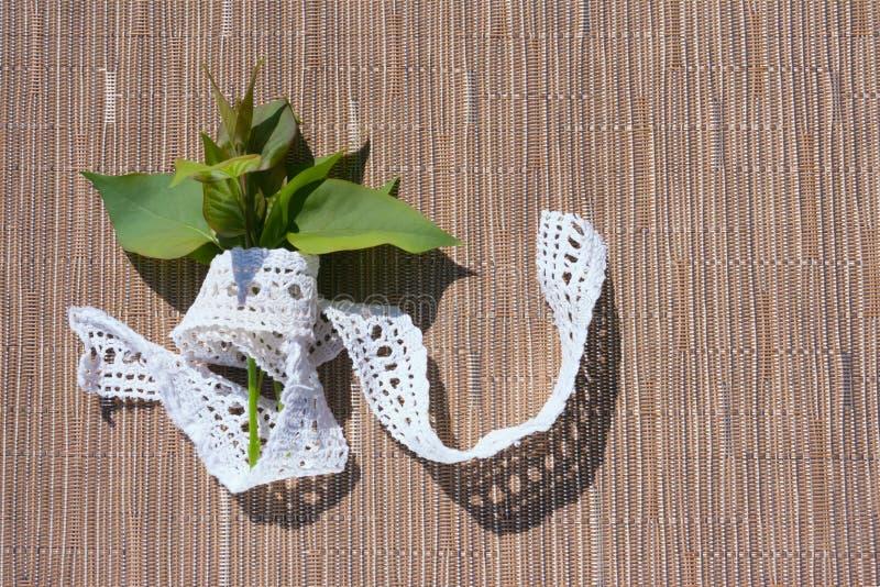 En bukett av gröna sidor av lilan royaltyfri bild