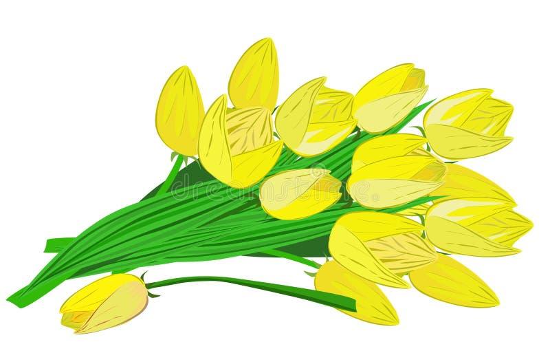 En bukett av gula tulpan royaltyfri illustrationer