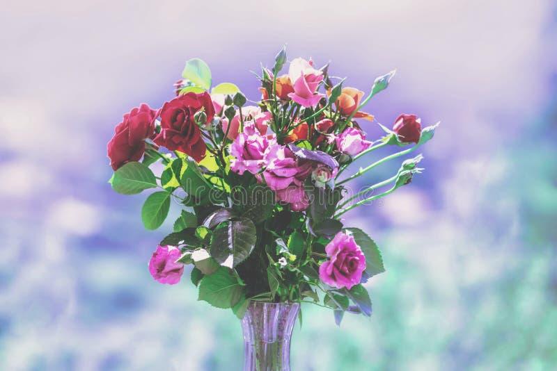 En bukett av kulöra rosor i en vas arkivbild