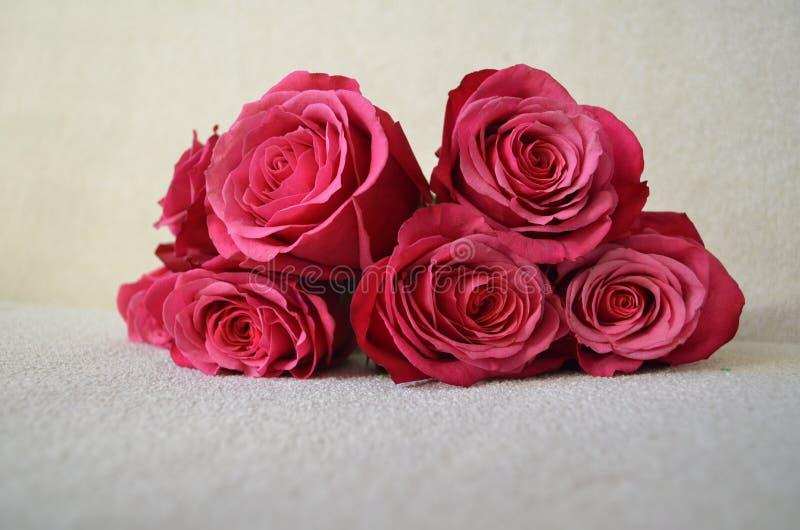 En bukett av livliga rosa rosor fotografering för bildbyråer
