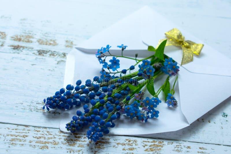 En bukett av musary och små blåa blommor i ett vitt kuvert som dekoreras med en guld- pilbåge på en ljus bakgrund fotografering för bildbyråer