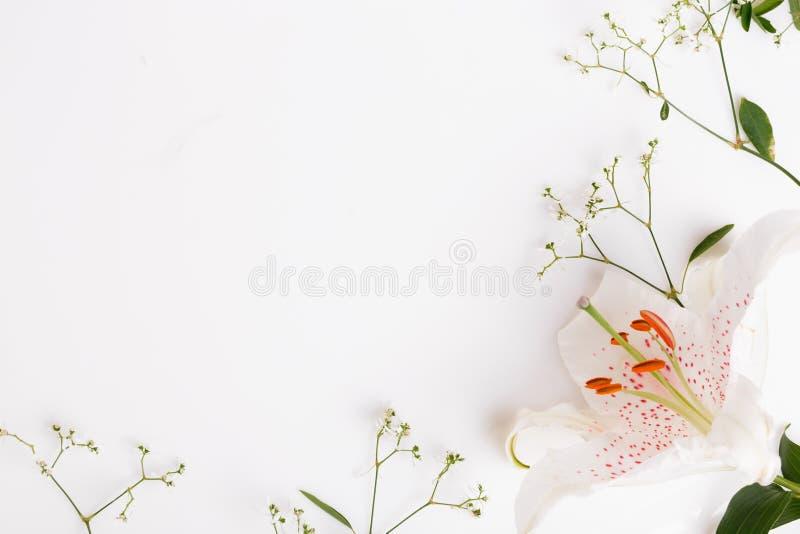 En bukett av vita blommor på vita bräden royaltyfria bilder