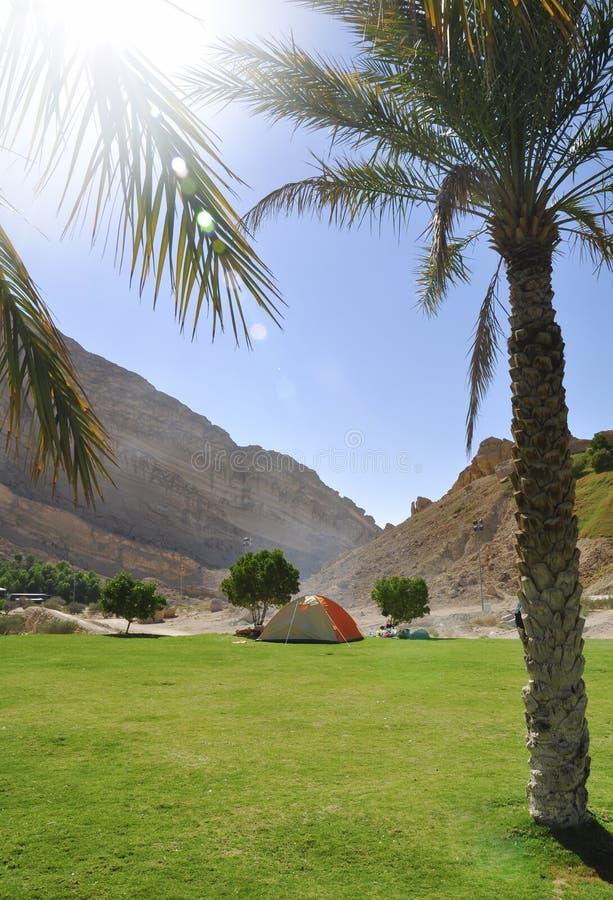 En campa tent fotografering för bildbyråer