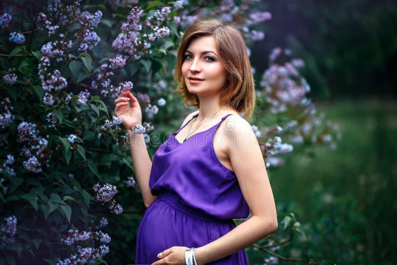 En charmig härlig ung gravid kvinna i purpurfärgad violett klänning i en blommande lila trädgård ser kameran med mjukhet fotografering för bildbyråer