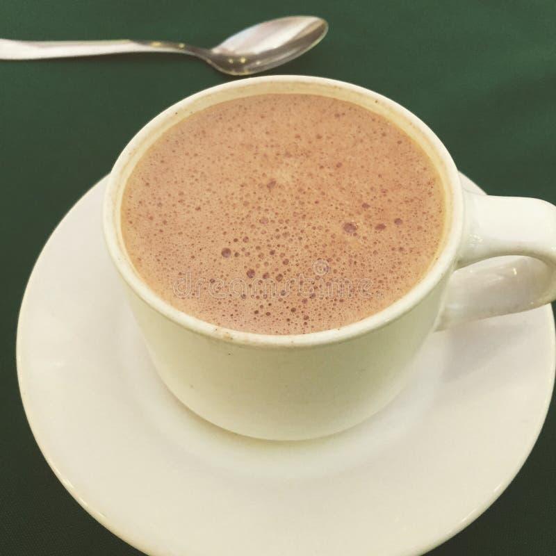 En chokladkopp royaltyfri fotografi