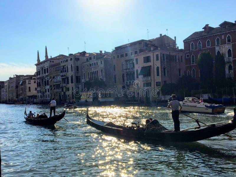 En closeup av två gondoljärer som tar turister ner den storslagna kanalen i deras gondoler, som solen mousserar på vattnet royaltyfria foton