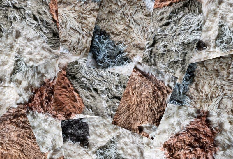 En collage av bakgrunder och texturer av naturlig fårull royaltyfri bild