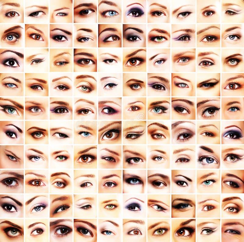 En collage av många olika kvinnligögon royaltyfria bilder