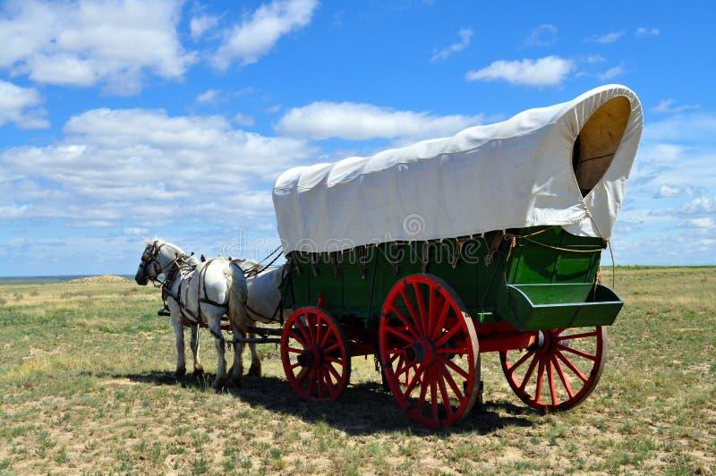 En conestogavagn drog vid laget av hästar arkivbild