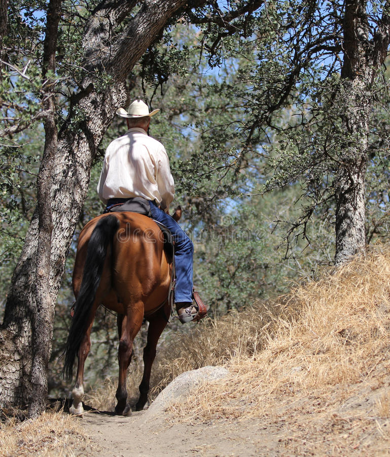 En cowboyridning i en bergslinga med ekar royaltyfria bilder