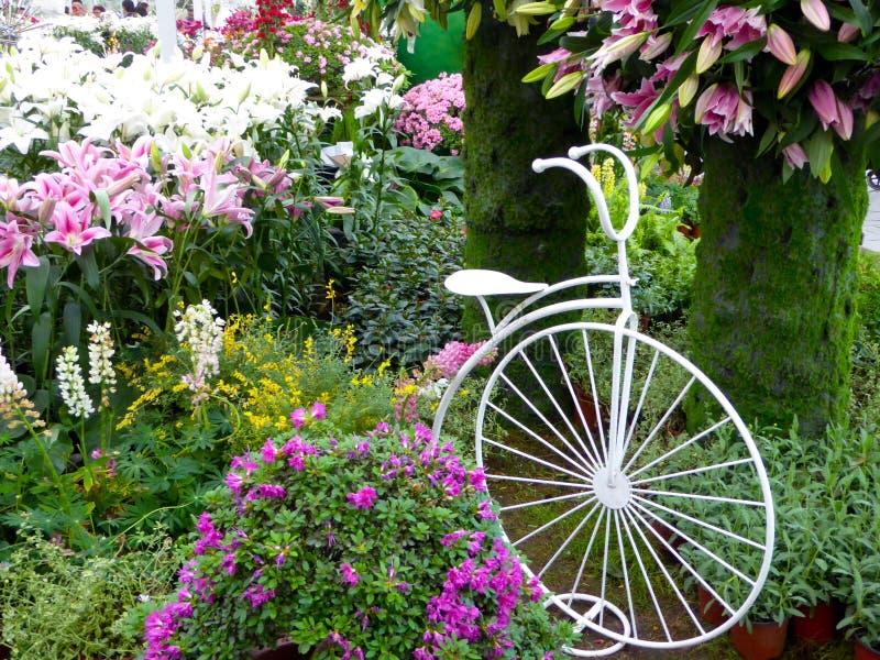 En cykel med omgivna blommor royaltyfri foto