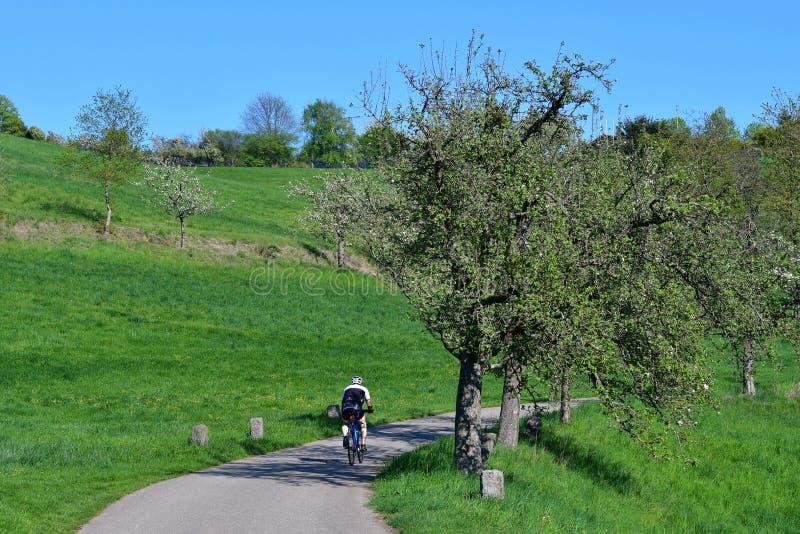 En cyklist på en slinga i ett härligt vårlandskap i Odenwalden, Tyskland arkivfoto
