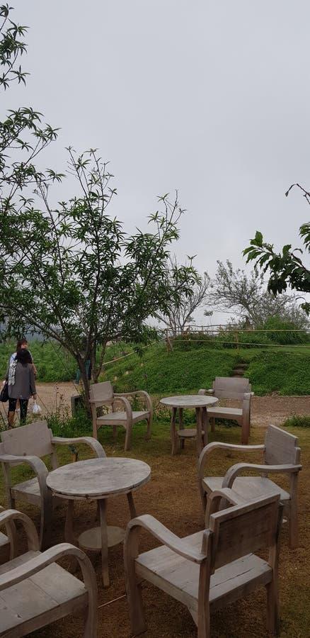 En dag på det trädgårds- berget arkivbild