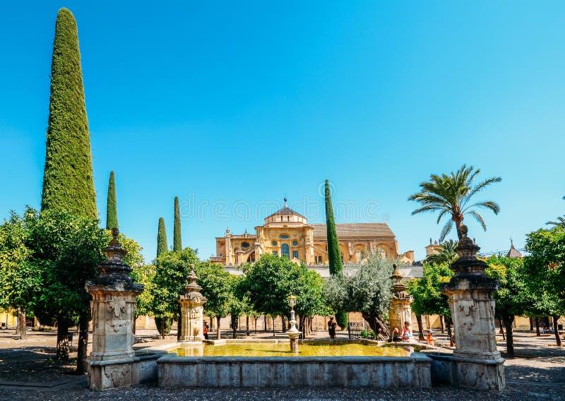 En dehors de la Mezquita de Cordoue du patio de los Naranjos - site de patrimoine mondial de l'UNESCO images libres de droits