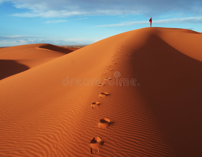En desierto fotografía de archivo libre de regalías