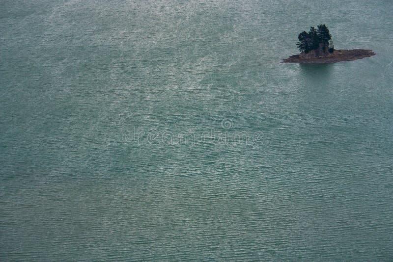 En detalj av en mycket liten ö med några träd i havet i Nya Zeeland arkivbilder