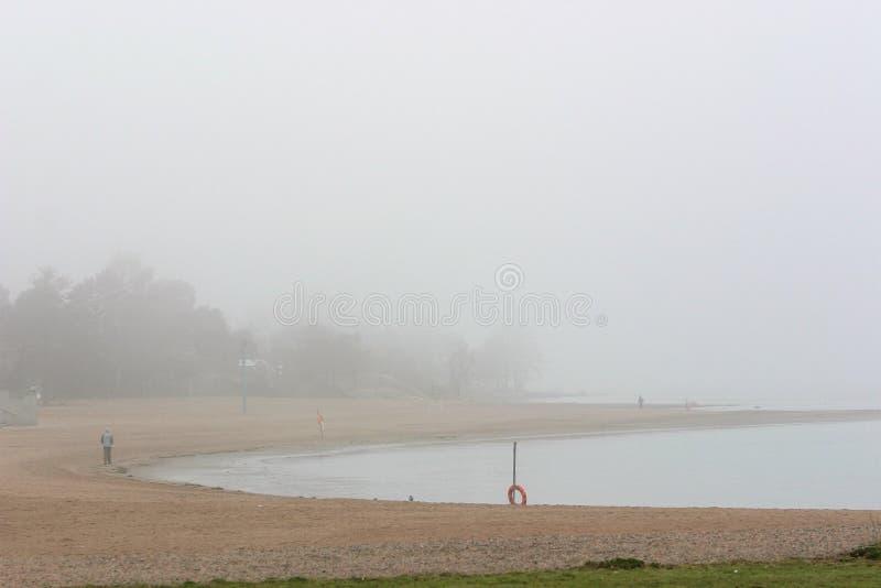 En dimmig strand mycket tidigt på morgonen royaltyfria bilder